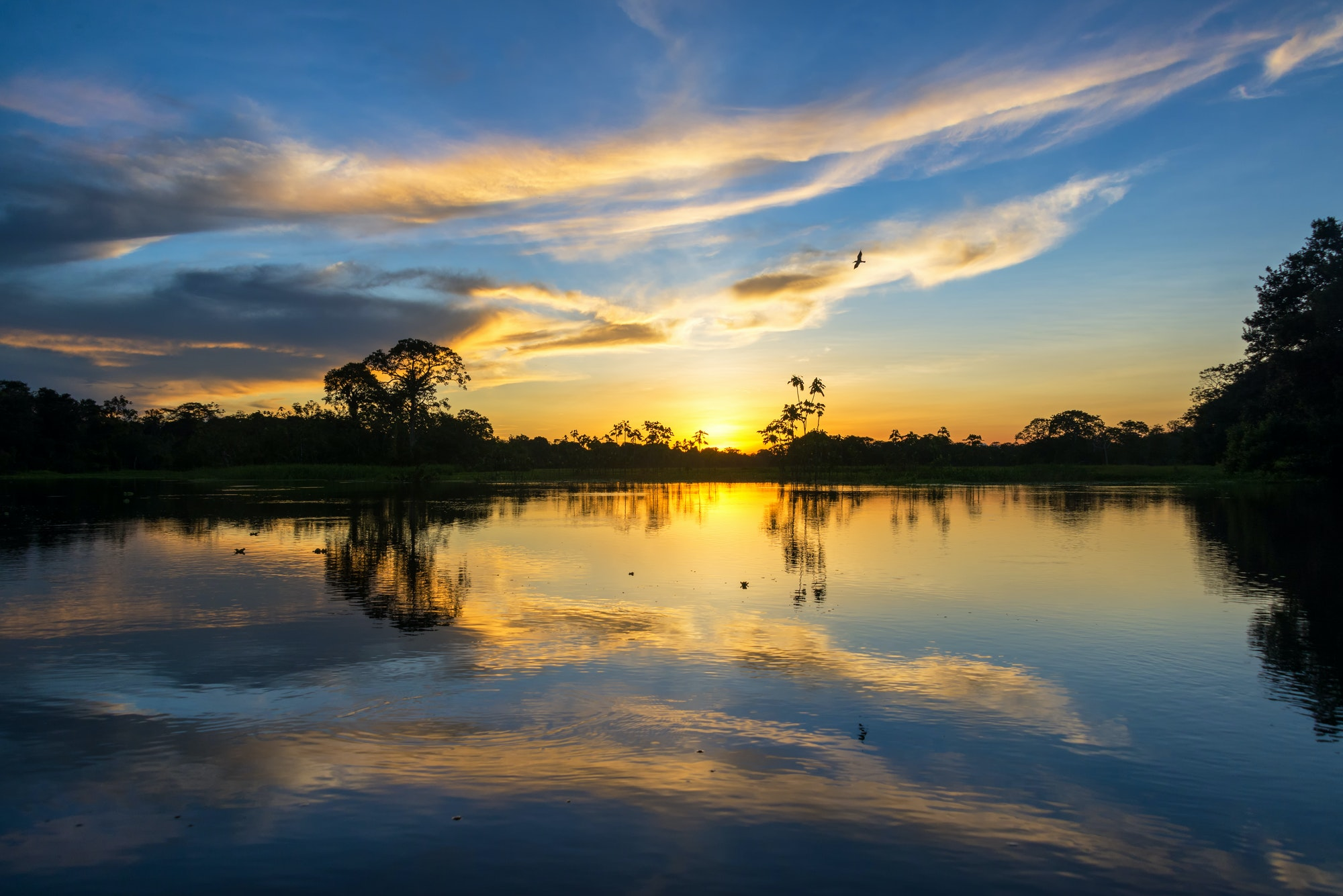 Sunset and Reflection in the Amazon